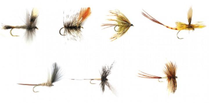 Fulling Mill Fliegenset - Mayflies 7er Set