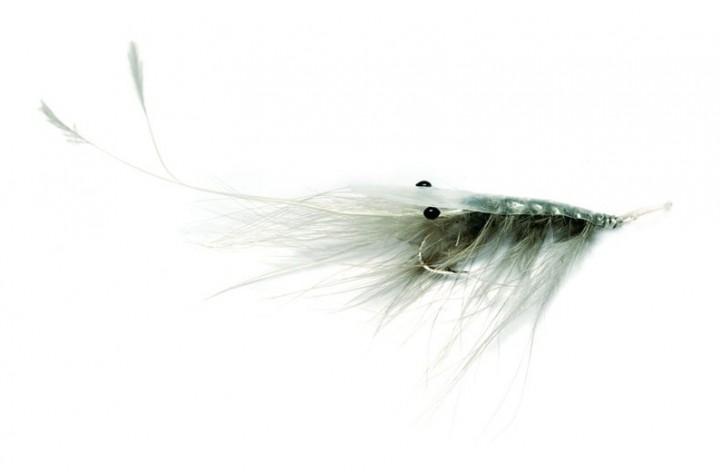 Fulling Mill Meerforellenfliege Oeland Spey Shrimp grau