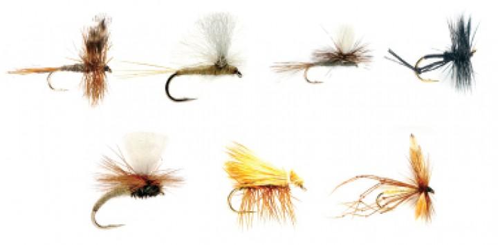 Fulling Mill Fliegenset - Dry Flies 7er Set