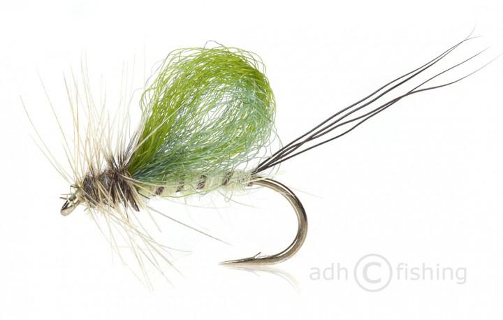 Fulling Mill Trockenfliege - Loopwing Mayfly
