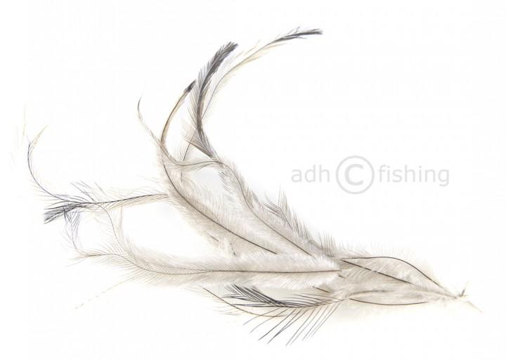 Hareline Emu Federn