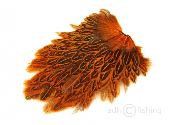 crawdad orange