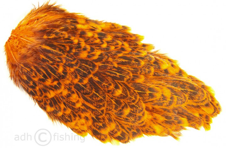 crawfish orange