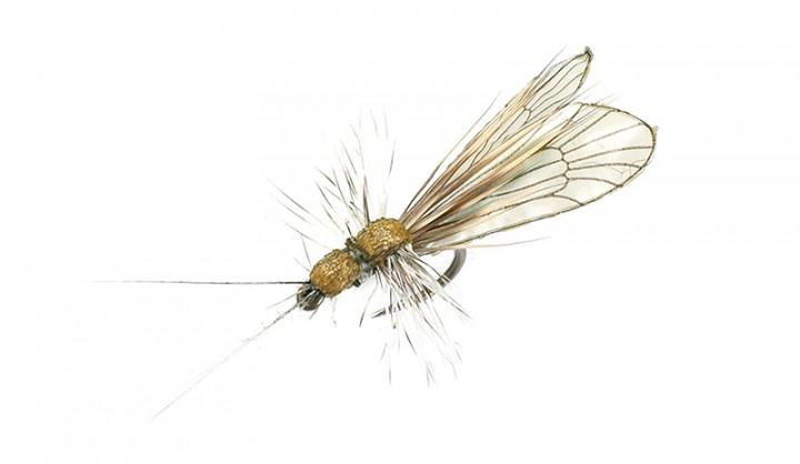 J:son Realistic Flies - Caddis Adult 4 cinnamon brown / apple green