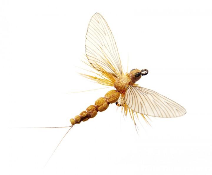 J:son Realistic Flies - Mayfly Spent sulphur