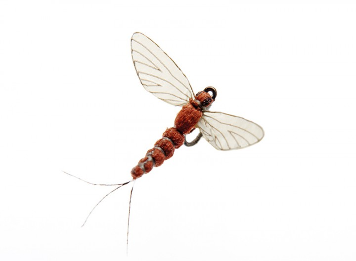 J:son Realistic Flies - Mayfly Spent 5 rusty red