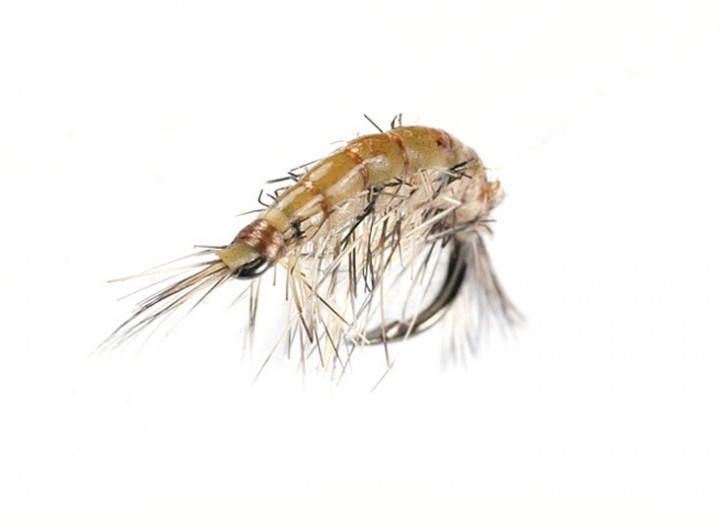 J:son Realistic Flies - Scud olive brown