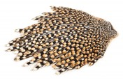 Jungle Cock Cape Bälge in verschiedenen Farben und Qualitäten
