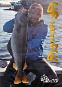 DVD - Lyr Meets Fly Fliegenfischen auf Pollack