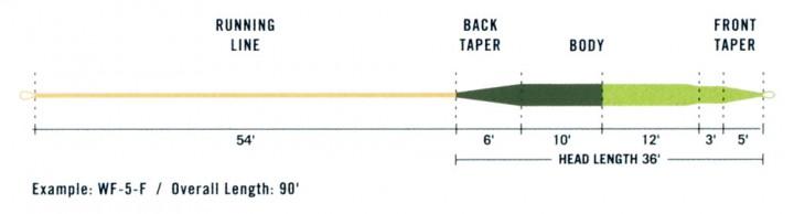 Rio Perception InTouch Fliegenschnur
