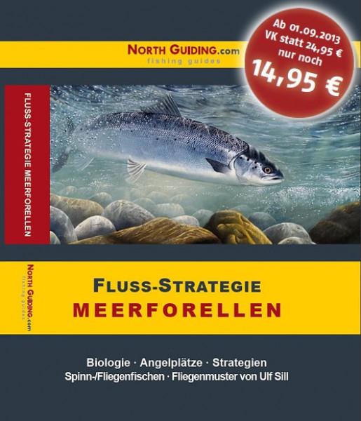 North Guiding Fluss Strategie - Meerforelle