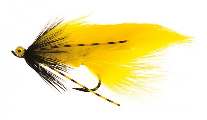 Zonky gelb