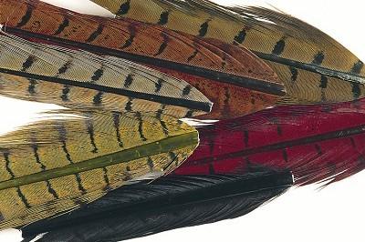 Veniard Cock Pheasant Centre Tails Natural Mixed