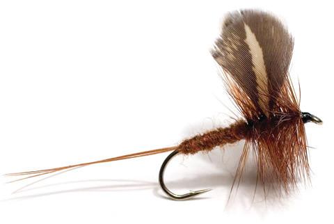 Trockenfliege - Rocken dark brown