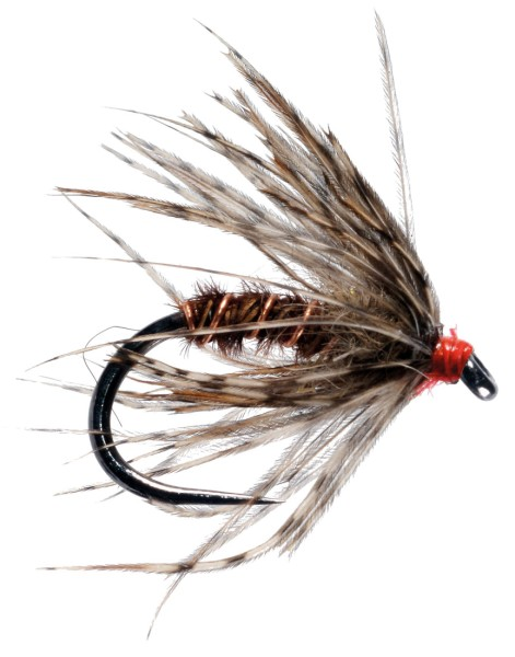Soldarini Fly Tackle Nassfliege - Pheasant Tail