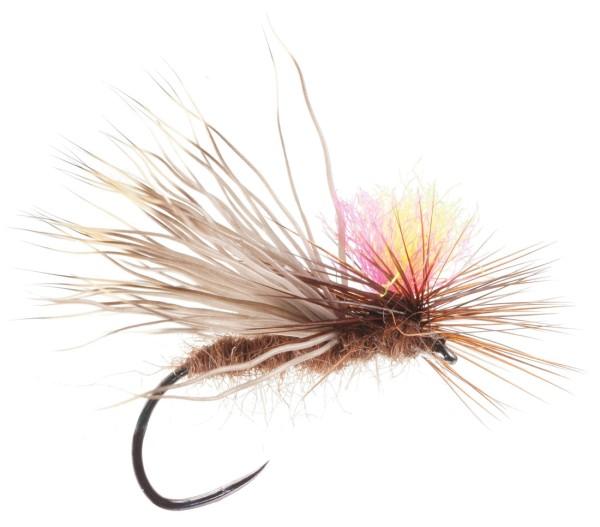Soldarini Fly Tackle Trockenfliege - Bicolour Parachute Caddis