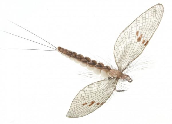 J:son Realistic Flies - Mayfly Spent vanilla cream