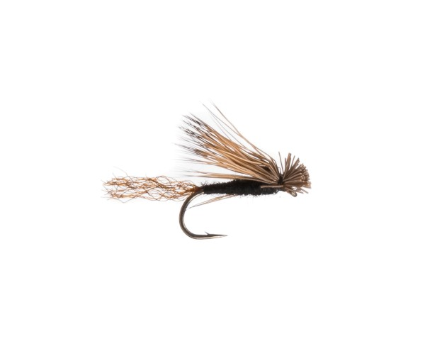 Black Tail Caddis Trockenfliege