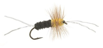Bich Creek black/yellow