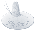 Fly Scene