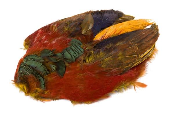 Veniard Golden Pheasant Body Skin dyed yellow