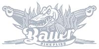 Bauer Pike Flies