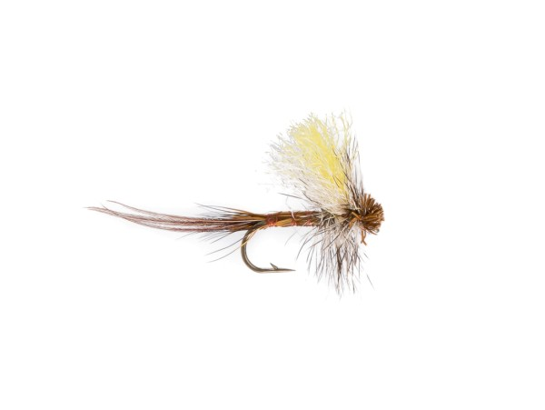 Tailed Dry or Die Trockenfliege