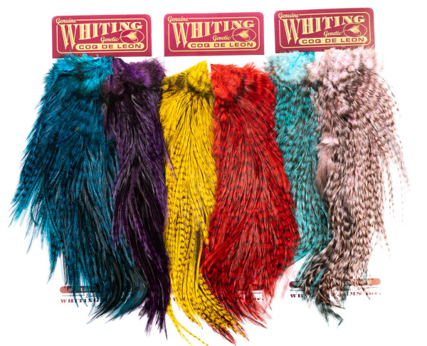 Whiting Rooster Coq de Leon Predator Pack