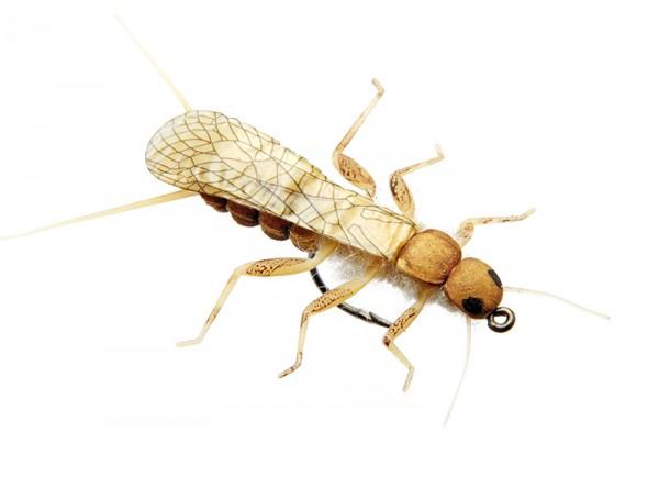 J:son Realistic Flies - Stonefly Adult golden