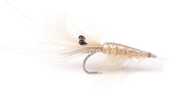 Guideline Meerforellenfliege Sand CDC Shrimp